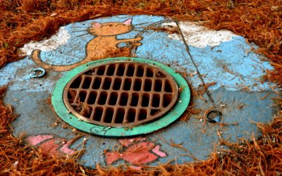 Sewer Inspections Have To Be Done – Long Beach Plumbing