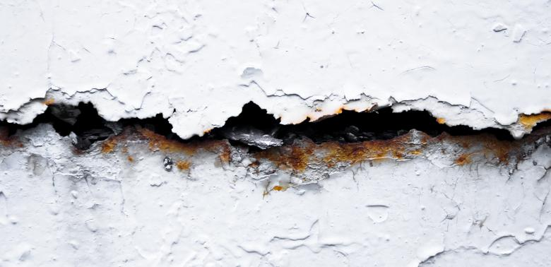 If You Had A Flood – You May Have Mold – Long Beach Plumber