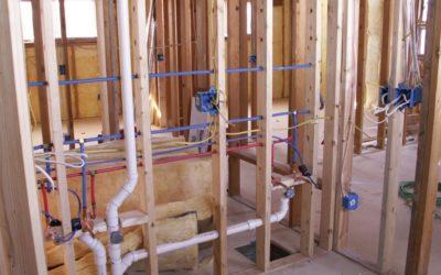 Mold Remedies – Long Beach Plumbing