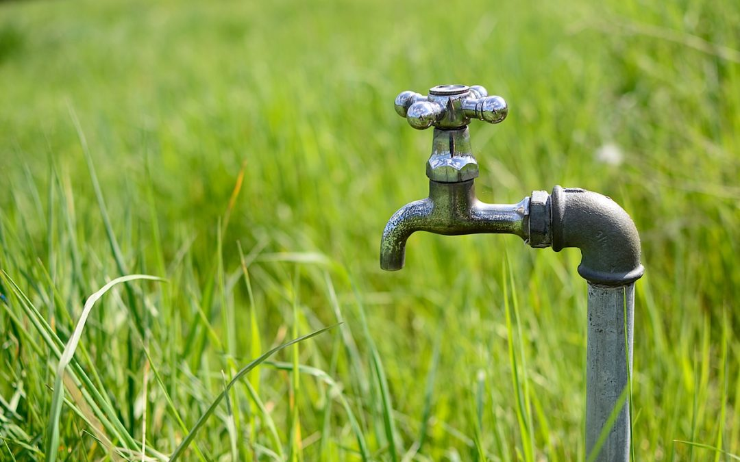 Understanding What Services To Choose From A Plumbing Company
