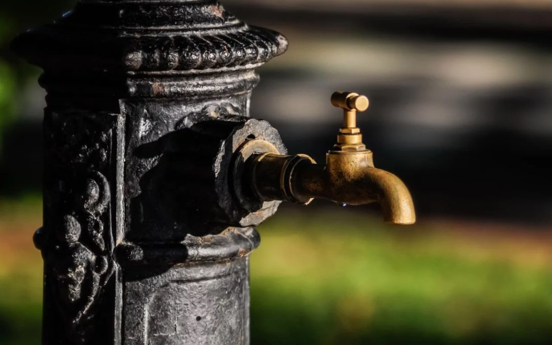 Plumbing Myths That Might Cost You Money