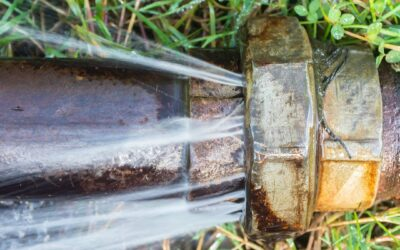 Incredible Tips On Preventing Clogged Drains and Plumbing