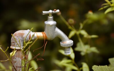 When Is Danger Imminent With Leaking Water Pipes
