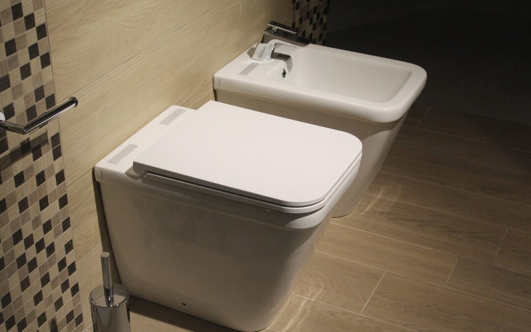 Some Of The Main Notable Causes of Toilet Clogs
