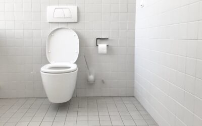 Great Tips for Removing and Preventing Rust Stains in Your Toilet Bowl